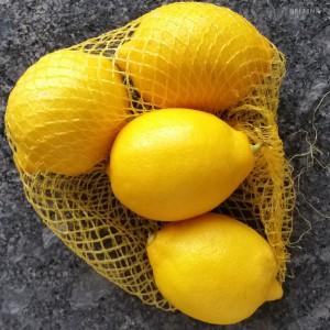 Zitronen Resten
