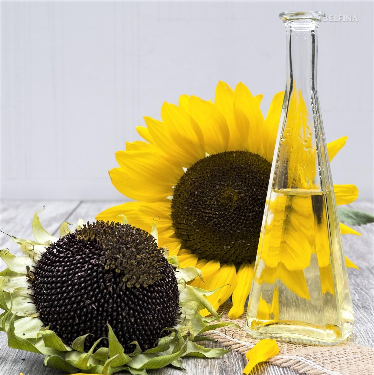 Sonnenblumenöl Herstellung