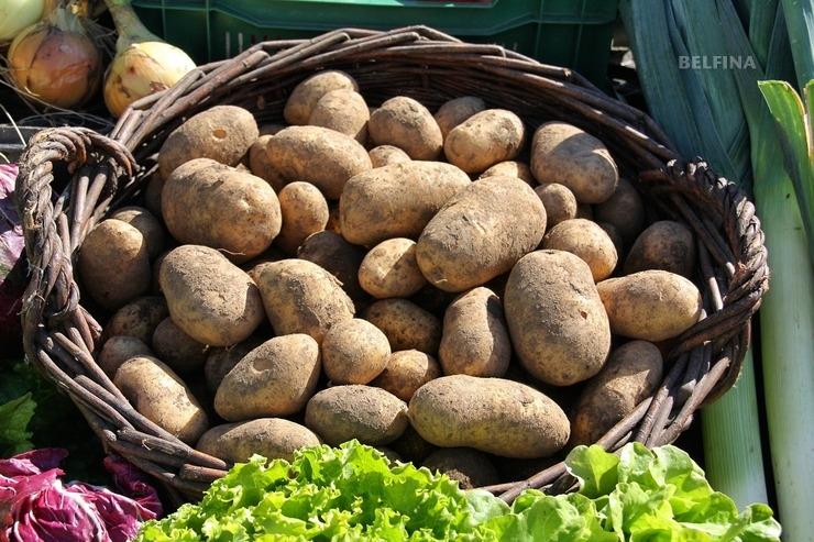 Smashed Potatoes an Pilzsauce